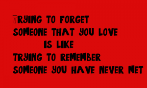 trying-to-forget-someone-that-you-love-is-like-trying-to-remember-someone-you-have-never-met