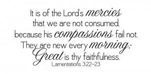 Lamentations 3_22,23
